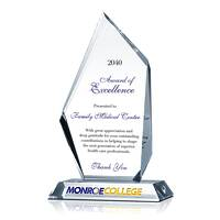 Excellence Award for 2017