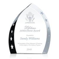 Government Service Lifetime Achievement Award
