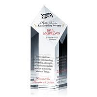 Public Service Leadership Award