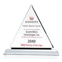 Partner Network Award of Excellence Sample Ideas