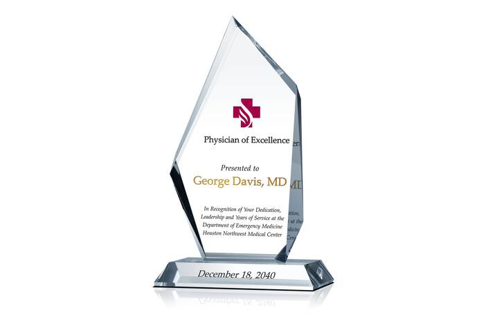 Physician of Excellence Award