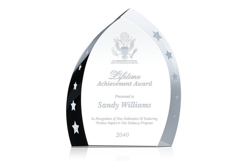 Government Service Lifetime Achievement Award