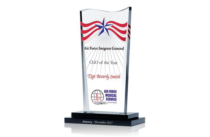 Air Force CGO of the Year Award
