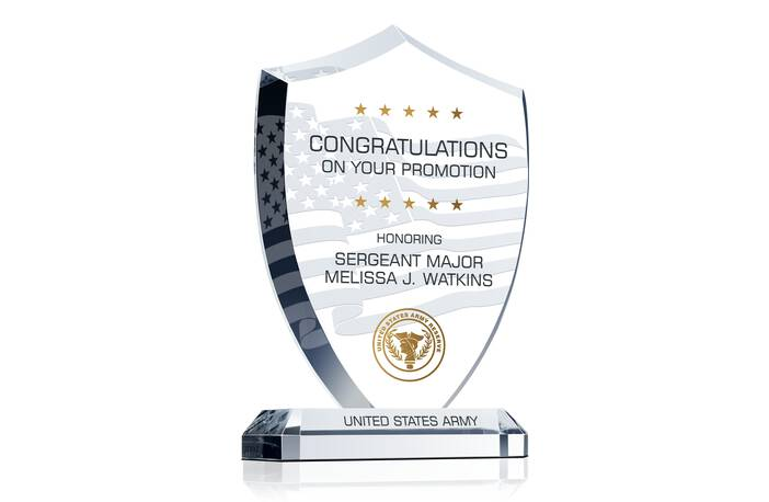 Army Promotion Recognition Award
