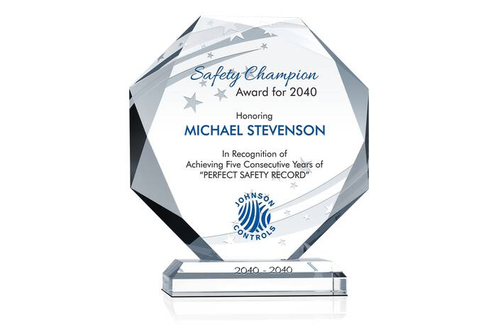 Safety Champion Award for 2013